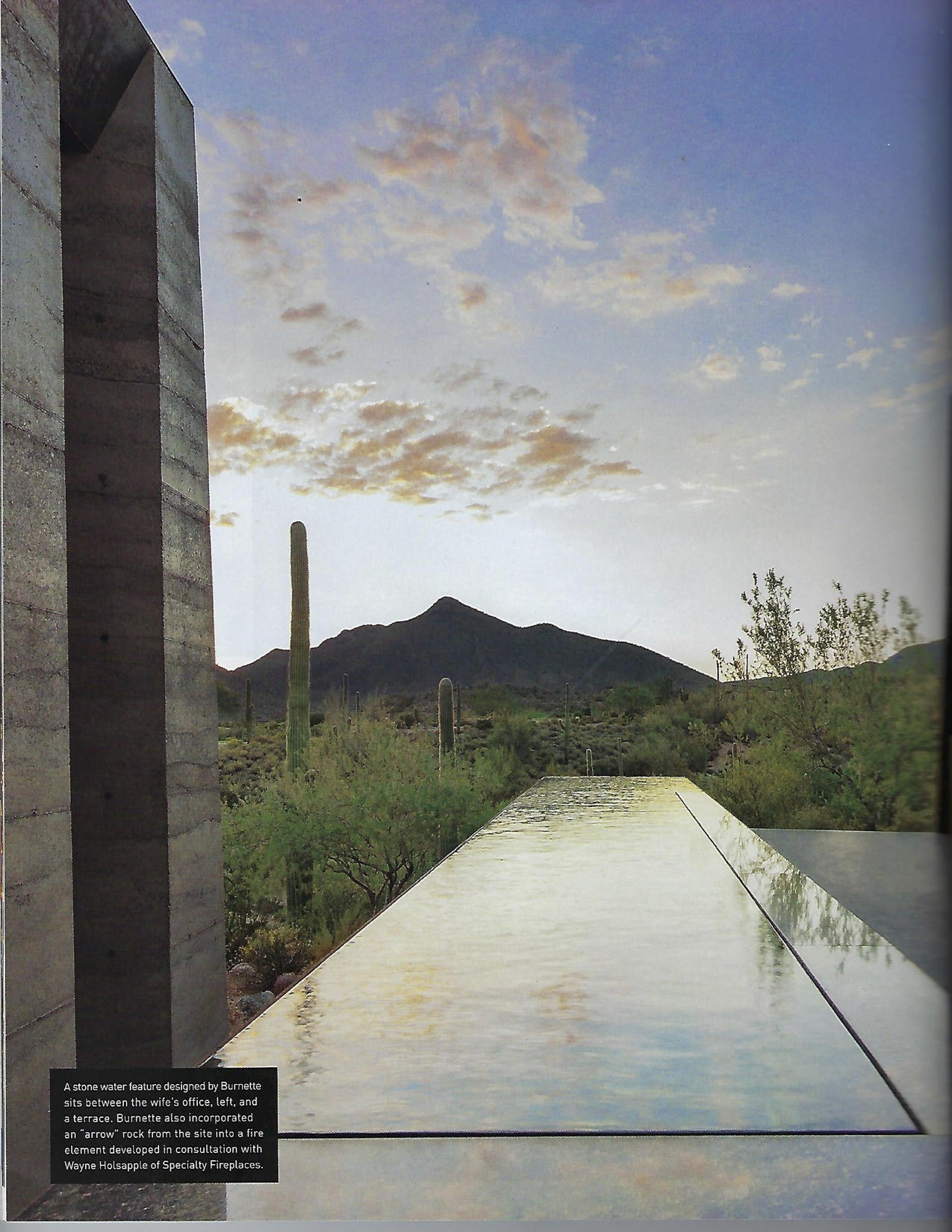 Luxe Interiors + Design - Arizona Spring 2014 Magazine (dragged) 8